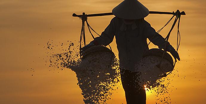 Quelques bonnes raisons de séjourner au  Vietnam